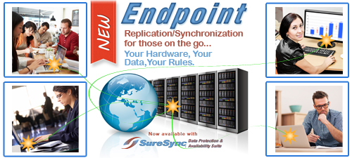 SureSync ENDPOINT